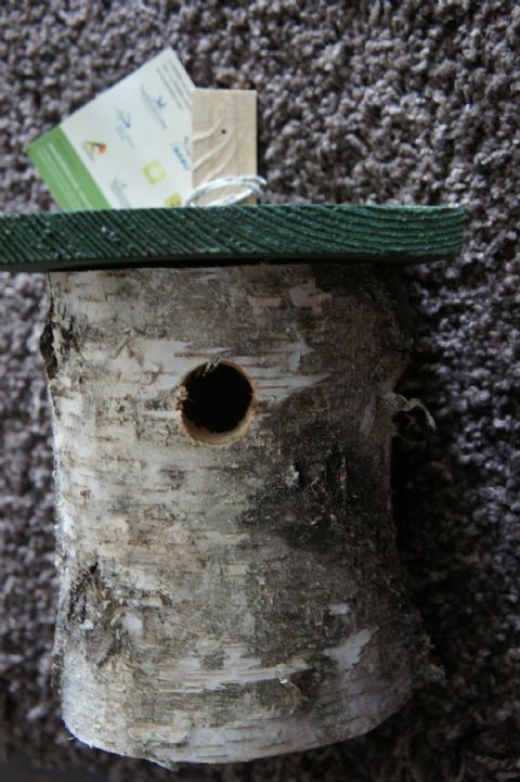 WILD BIRD NEST BOX - NATURAL BIRCH LOG NEST BOX FOR SMALL WILD BIRDS